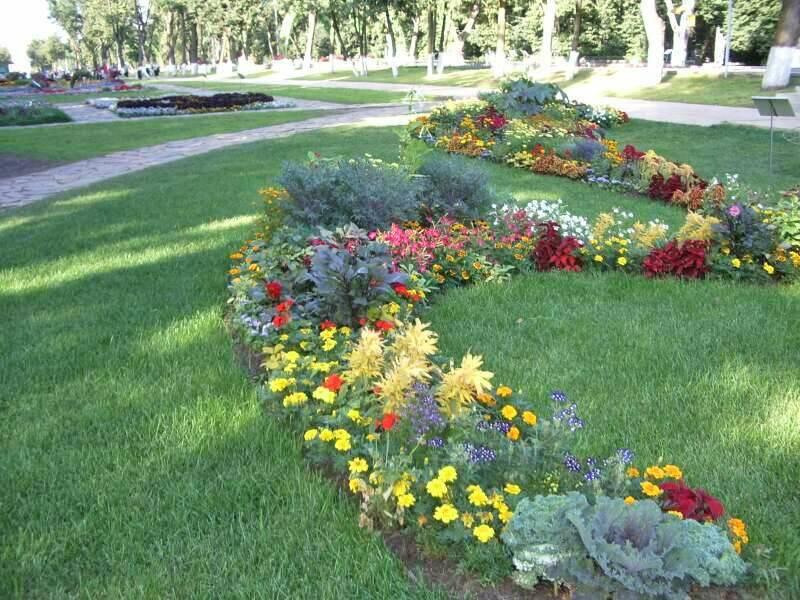 Ландшафтный дизайн фото цветники